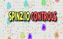 Different Types Of Spinz.io Controls